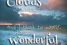 What the wonderful world...