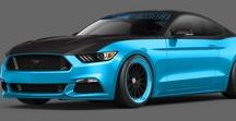 BLUE Mustangs / Ideas for adding vinyl to my 'Grabber Blue' 2016 Mustang G