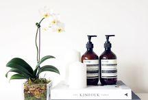 Beauty design / fragrance