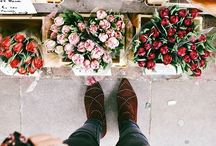 Floral / Floral happiness