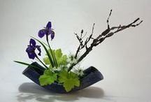 Way of the Flower / Ikebana