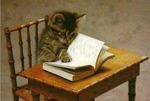 Fluffy Readers / Because the internet was made for looking at pictures of cute animals