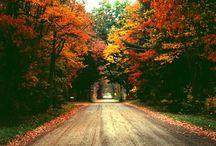 "Fall. / ""Autumn...the year's last, loveliest smile."""
