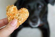 Gâteries pour chiens