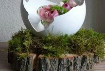 Spring and Easter flowering / Spring and Easter Centerpieces