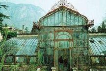 Greenhouses and Veggie-garden