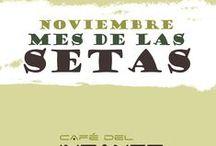 Mes de las Setas  / Noviembre 2013