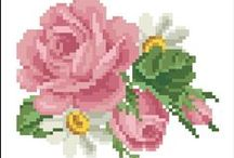 Roses / by ❤ Olga Ch ❤