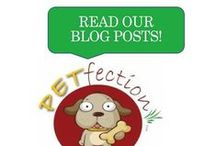 Gotta Love It Articles / Awesome, educational tips on pets and pet products.