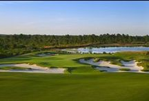 Golf Club Course Tour / Stunning and beautiful photos of holes 1-18 at The Concession Golf Club in Bradenton, Florida