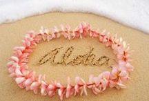 Paradise / Aloha au i Hawai'i!