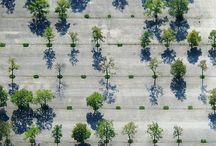 HKA terrein - begroeiing