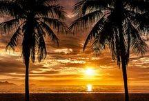BRAZIL / Come and enjoy the amazing experience that is getting to know Brazil !   Rio de Janeiro, Iguassu, Pantanal, Salvador, Recife, Fortaleza, São Paulo, the Amazon, Brasiía, Fernando de Noronha, Florianopolis, etc.