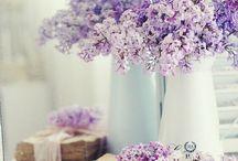 flowers❁ / flowers, flowers, flowers...