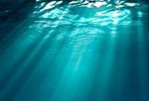 Acqua, Water, Eau... / L'acqua è fondamentale per la vita. Noi siamo molto attenti all'aspetto #green del #cleaning e del rispetto dell'ambiente. Anche i nostri prodotti sono scelti in base a questa filosofia.  Abbiamo creato questa bacheca per rendere omaggio a questo elemento fondamentale...
