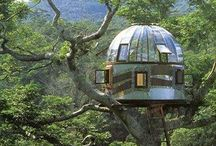 TREE HOUSES / Architecture