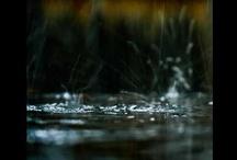 La pluie fait  des claquettes / http://www.youtube.com/watch?v=ix88VUo7Fyk