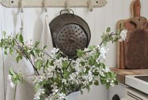 Tabletop/Dishes/ Kitchen Display / by Marsha Pfiester