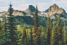 Wilderness awaits....x