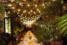 Garden Wedding / by Brittany Shearer
