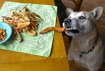 Vegan Dog / Be sure to check out my other vegan boards, I have several. / by Ann S Ⓥ