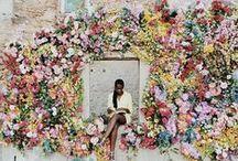 Inspiration | Floral Arrangements