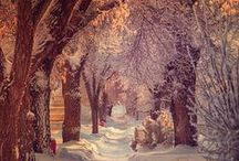 Why winter sometimes is so lovely^^