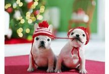 Joulu>♥<Christmas
