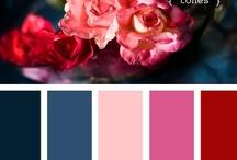 Color Analysis :: Winter Color Palette