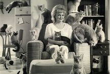 Crazy cat lady / All things cat...and kitten...and the things that make life purrrrrrfect!  / by Emma du Toit