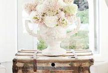 Flowers, Plants & Floral Arrangements / Flowers | Plants | Floral Arrangements | Flower Arrangements | Floral Design | Flower Design | Centerpieces