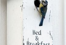 My Bed & Breakfast ideas