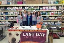 Royal Oak Event! / by Last Day Dog Rescue