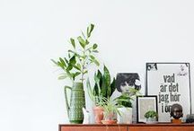 H O M E - D E C O R / The hottest ideas for throughout your home. From color and pattern combinations to furniture and decor ideas to fabricate the home of your dreams.