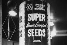 Atomic Gardens / In the mid-20th Century there was a craze for using radiation to induce mutations in crops, in the hope of creating new and improved cultivars. Although almost forgotten today, many of our popular crops descent from the experiments that hoped to advance humanity, using 'atoms for peace'.