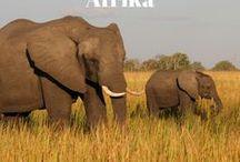 Afrika / Reisetipps, Packlisten und viele weitere Ideen für Afrika erwarten Dich auf dieser Pinnwand. #afrika