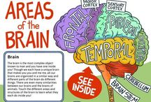 Brain Injury & Stroke Awareness / Brain injury information and Stroke awareness