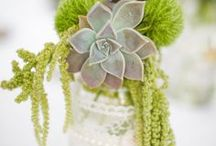 Beautiful jar wedding ideas / Collecting jars of all sorts of shapes and sizes is an easy way to add some vintage flair to your wedding or event. Fill with flowers or candles for a stunning effect!