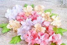 Papierowe kwiaty / Paper flowers