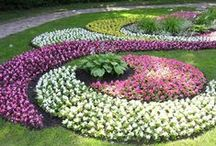 Landscaping Ideas and Inspirations / The best landscaping ideas to inspire you... / by Katy Blanchard