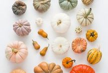 | autumn colour | / Originally started as part of the blogging event Celebrate Color - http://www.stitchedincolor.com/p/celebrate-color.html