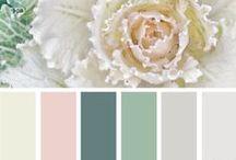 | spring colour |