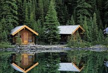 Cabin LOVE / by Lyn Barlow Stemmerman