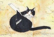 Siepie / Siepie, the Cat, has his own blog: http://siepie-de-kat.blogspot.nl/