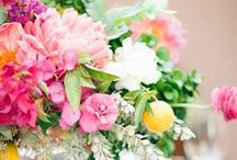 Bright Botanical Weddings / Bold florals + colorful and bright wedding inspirations. / by Kate Aspen