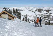 Utah family skiing / Skiing and snowboarding in Utah, Park City, Deer Valley, The Canyons, Snowbird and Atla, Solitude, Brighton, Snow basin and Powder Mountain...see our ski resort reviews