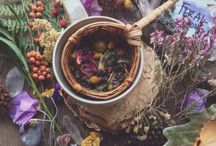 The Herbal Library / The age old tradition of wise woman herbal magic.