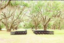 MP | Weddings at Litchfield Plantation / Weddings located at Litchfield Plantation in Pawleys Island, SC.