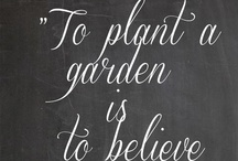 Garden -Tips and Ideas- / by Katherine Joy