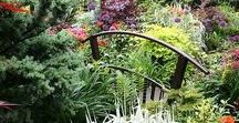 Feng Shui / Information and ideas on Feng Shui design principles and practices for your home and garden.